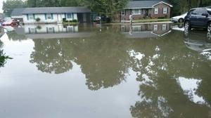 Water Damage Restoration Local Area Flooding Event